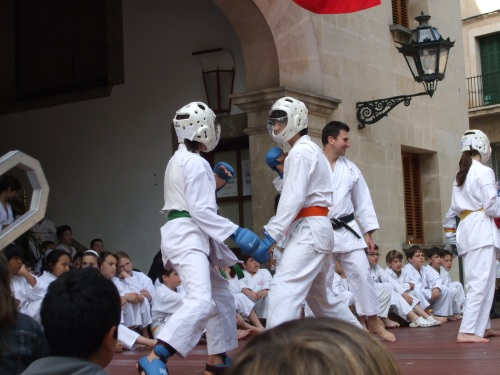201005 DEM. SA FIRA 1 039