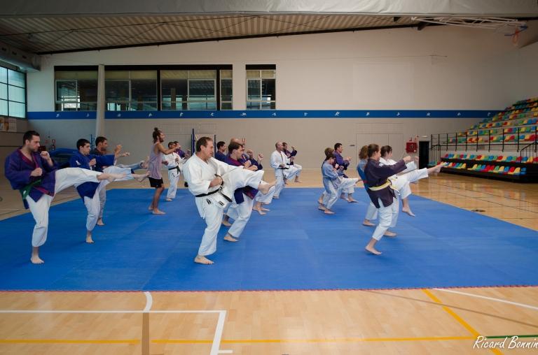 16- Tai-jitsu primer kata