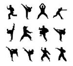 kung-fu-artes-marciales-icono-cifras-silueta-material_15-2186
